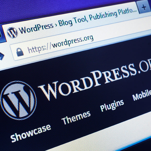 Our must use WordPress Plugins